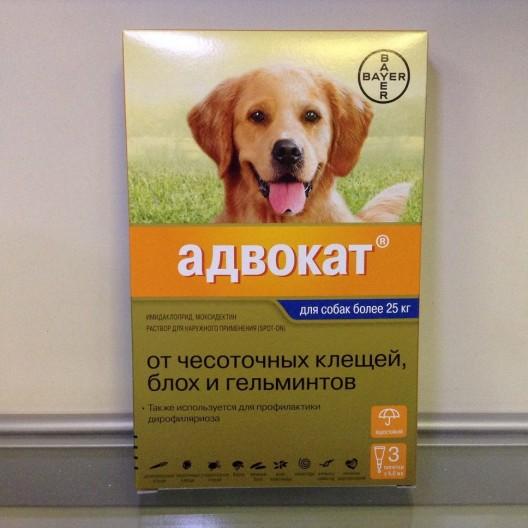 Купить адвокат,капли для собак весом более 25 кг 1 пипетка