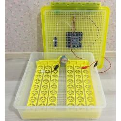 Бытовой инкубатор на 48 яиц с контролем температуры, влажности и автоматическим переворотом