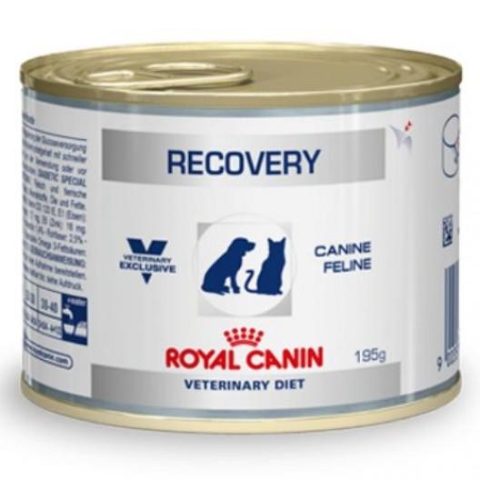 Купить Рекавери (канин/фелин) 0,195 кг