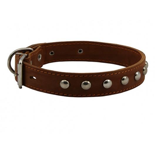 Купить Ошейник кожаный двойной с украшением ёж 12 мм, 20-24