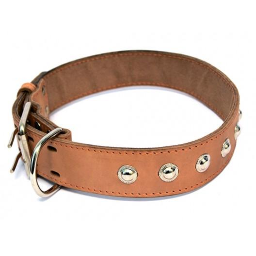 Купить Ошейник кожаный двойной с украшением, кольцо перед пряжкой 20 мм, 31-39 см