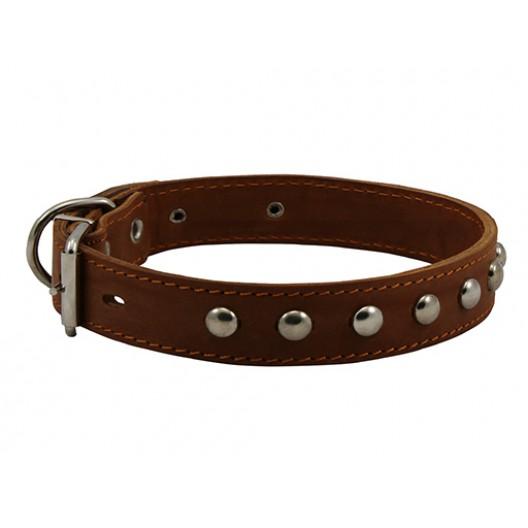 Купить Ошейник кожаный двойной с украшением, 30 мм, 49-58 см