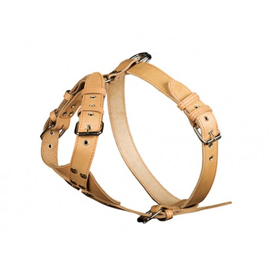 Купить Шлейка кожаная с треугольником однослойная 25 мм, шея 44-60 см, грудь 69-77 см