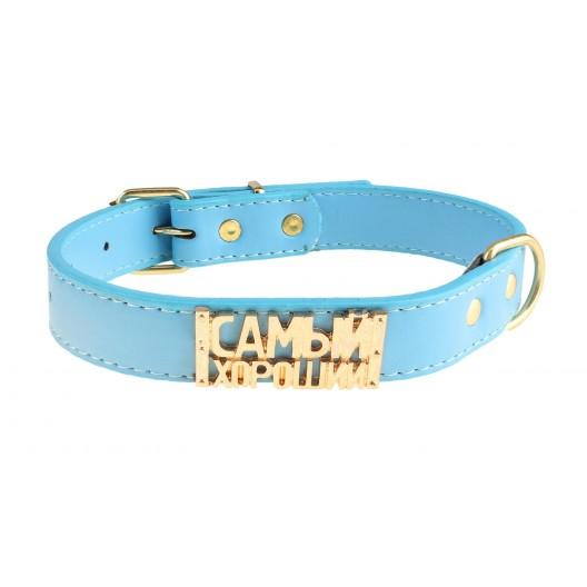 Купить Ошейник Мюнхен голубой с медальоном Самый хороший 2,5*45 см
