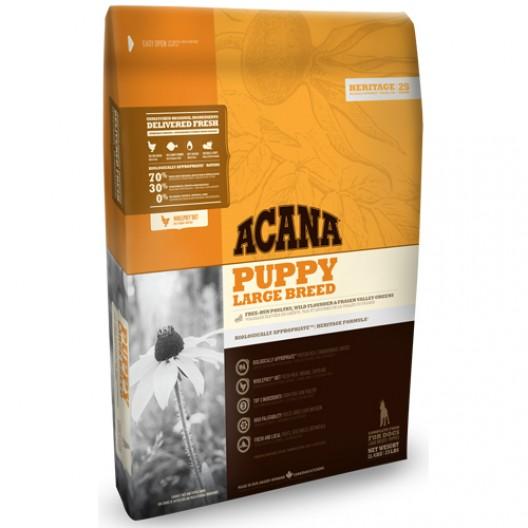 Купить Акана Херидейдж паппи ладж брид - сухой беззерновой корм для щенков крупных пород