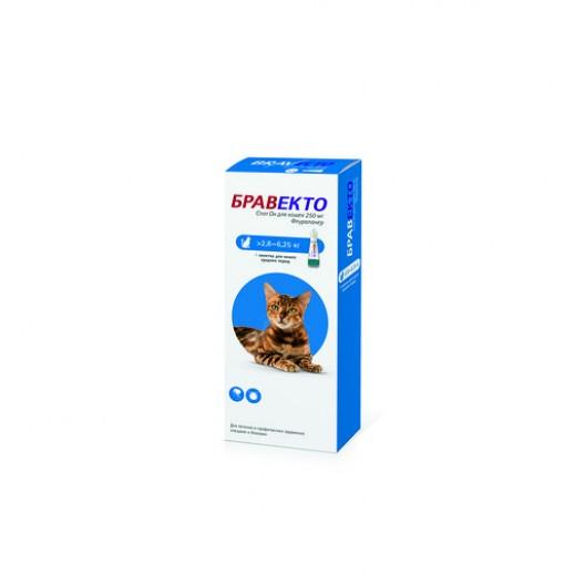 Купить Бравекто SpotOn для кошек 2,8 - 6,25 кг