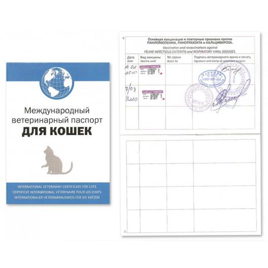 Купить Ветеринарный паспорт для кошек