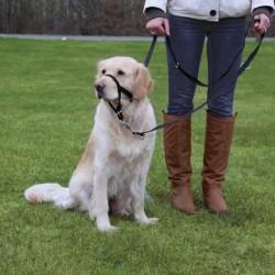 TRIXIE,Намордник для собак тренировочный(недоуздок),М 27 см(длина поводка 40-48 см)