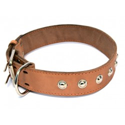 Ошейник кожаный двойной (спилок) с украшением 35 мм, 50-59 см