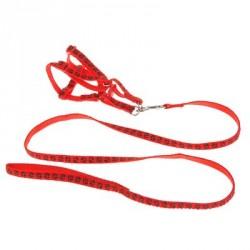 """Комплект """"Лапки"""" поводок 120 см, шлейка26-41 см, красный"""
