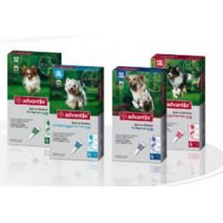 Адвантикс для собак более 25 кг